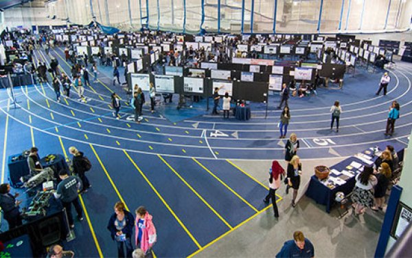 Students and faculty displaying poster presentations at Research ShowCASE