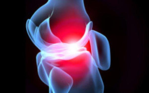 cartilage scan