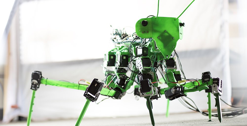 preying mantis robot