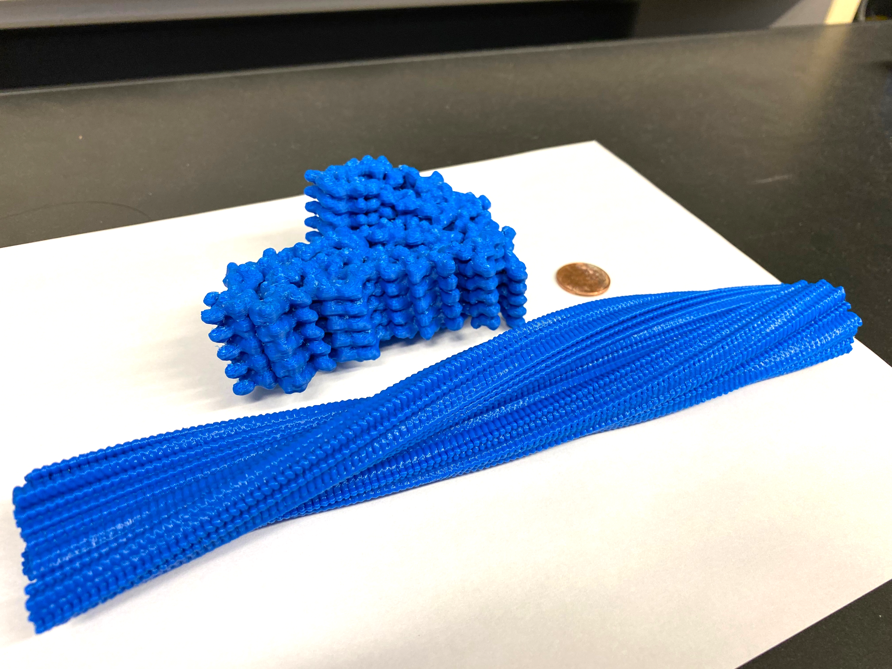 Two models of a protein printed in blue plastic. One is curled up and knotted. The other is long and straight.